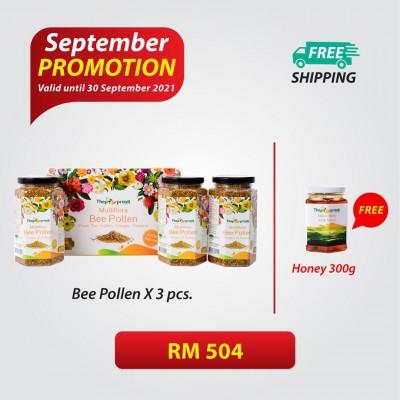Multifora Bee pollen 330gx3 Free Honey 300g